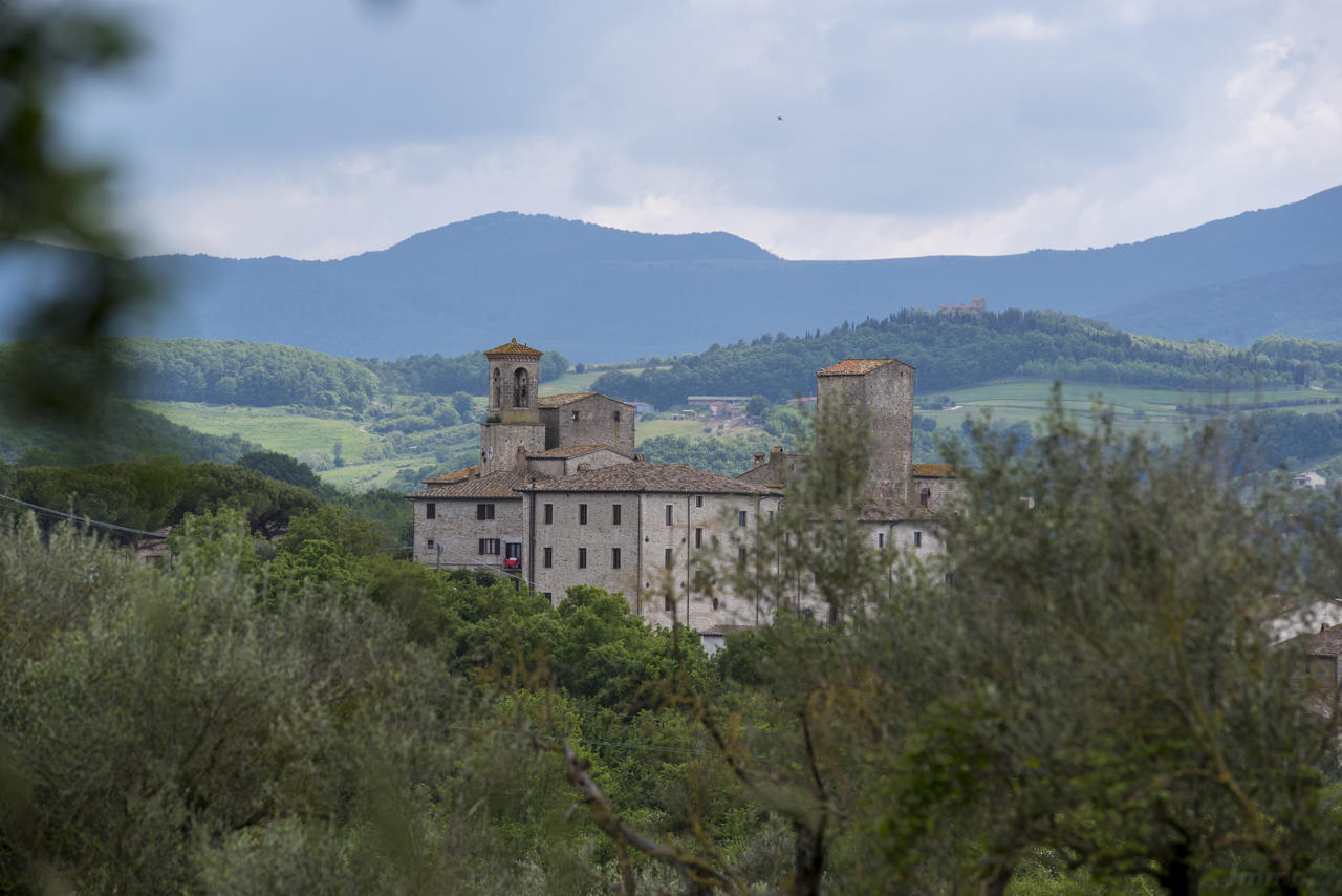Schloss Umbrien kaufen (294)