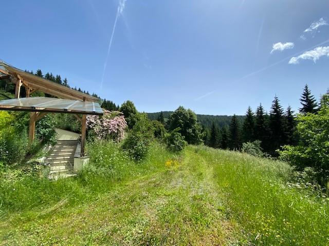 Einfamilienhaus Metnitz kaufen (5)