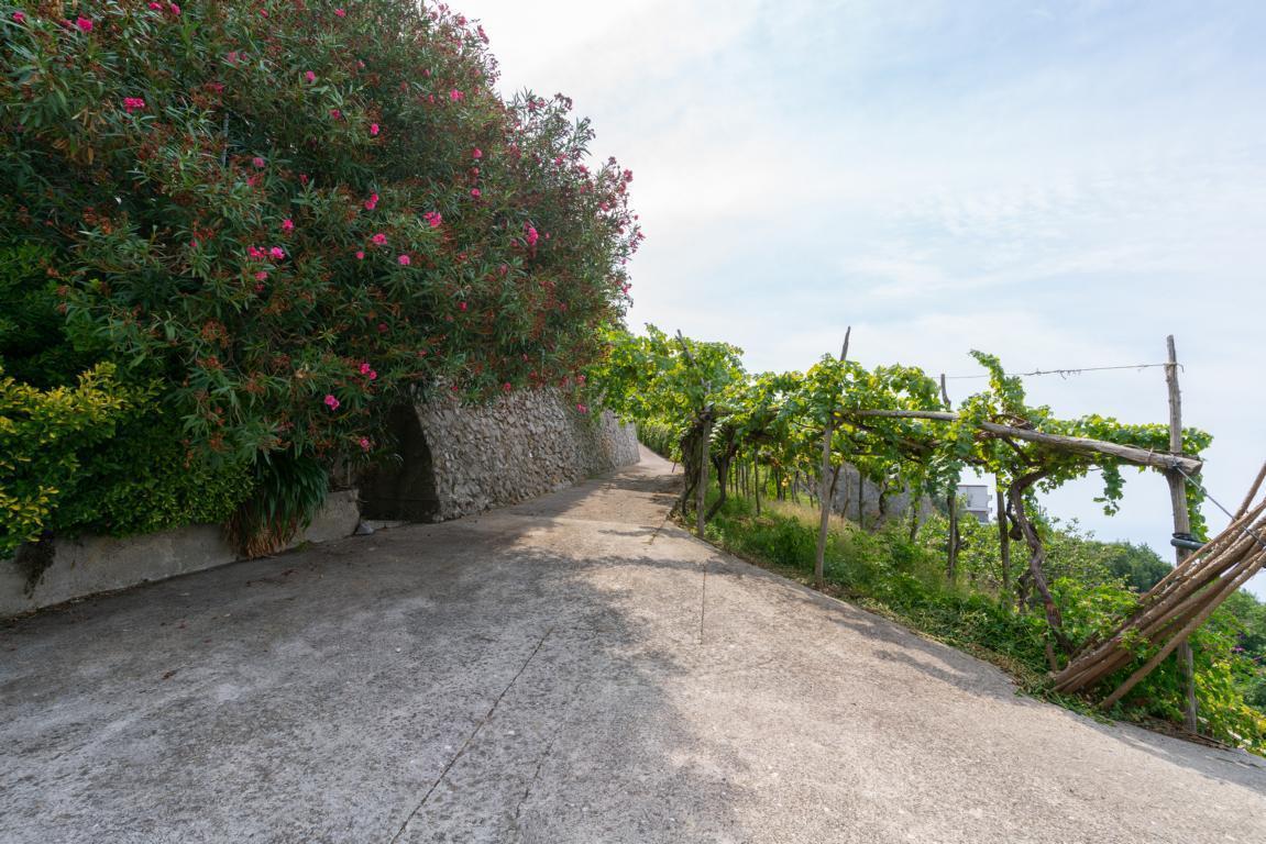 Villa Amalfi kaufen (31)